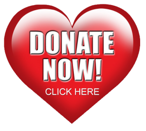 Donate Now - Saving a Heart on Valentine's Day