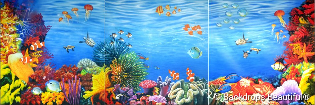 Coral Reef Panel - November New Backdrop