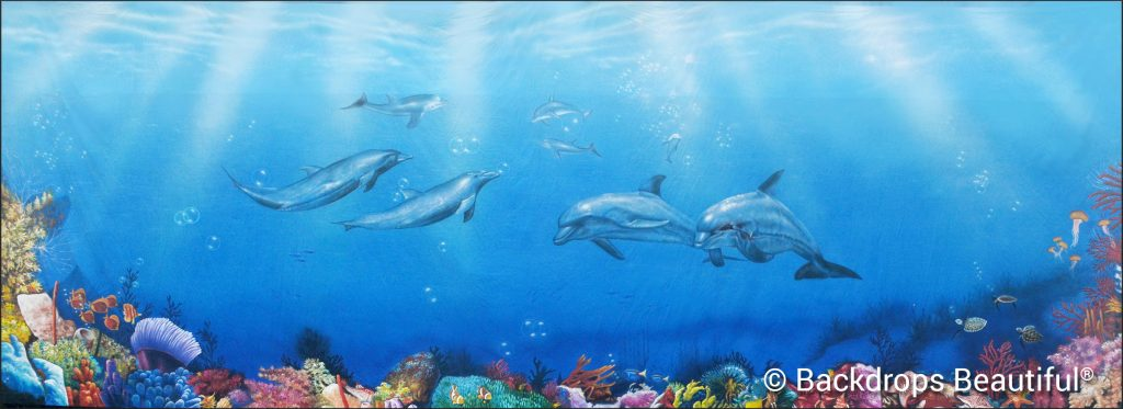 November Backdrops - Coral Reef 9 Dolphins