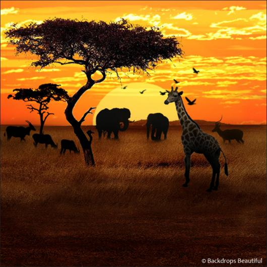Search And Compare African Savannah 1 Rental In United