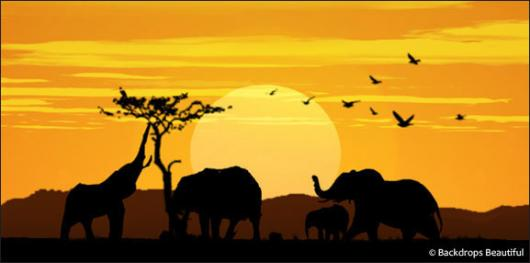 Backdrops: African Elephant Sunset 2