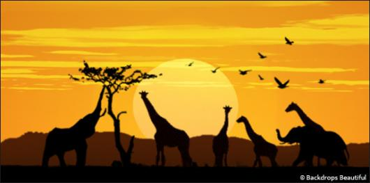 Backdrops: African Animal Sunset 2