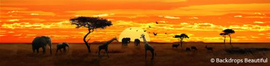 Backdrops: African Savannah 3