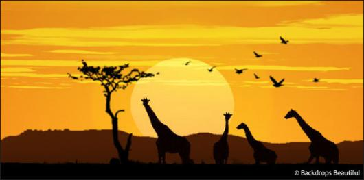 Backdrops: African Giraffe Sunset