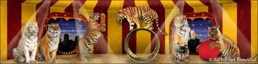 Backdrops: Circus 10 Tigers