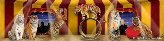 Backdrops: Circus 10 Tigers