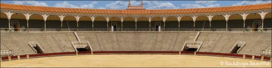 Backdrops: Arena 2
