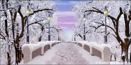 Backdrops: Walk in the Park Winter 3D