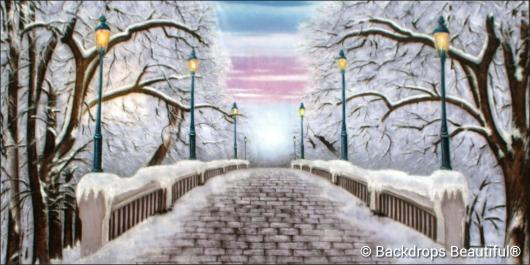Backdrops: Walk in the Park Winter 3E
