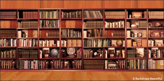 Backdrops Bookshelves 2