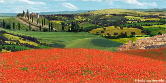 Backdrops: Tuscany 1B