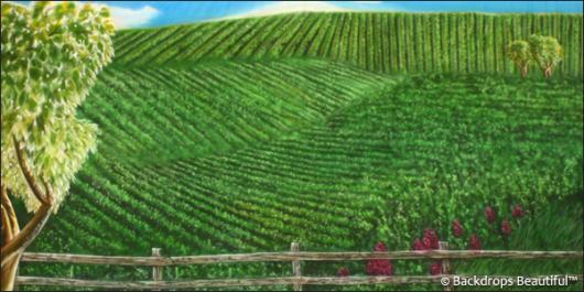 Backdrops: Tuscany 7c