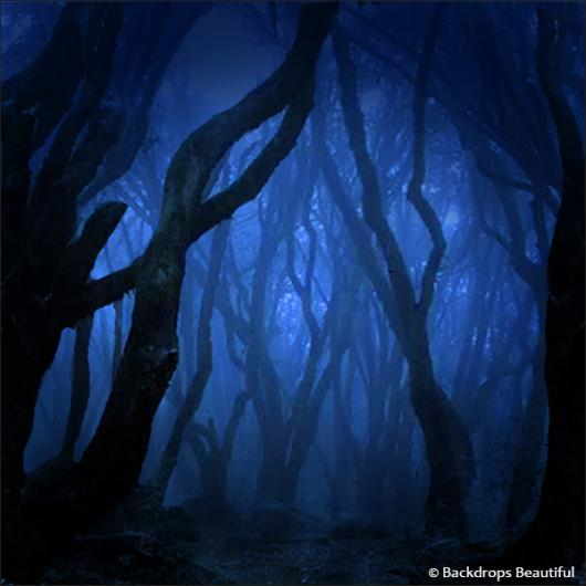 Backdrops: Dark Forest 10 Twilight