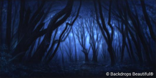 Backdrops: Dark Forest  9 Twilight
