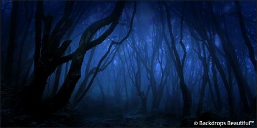 Backdrops: Dark Forest  7 Twilight