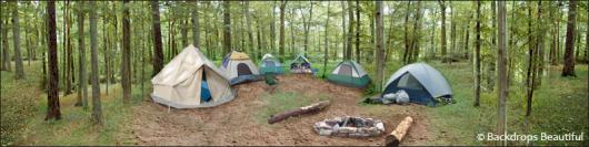Backdrops: Campsite 3