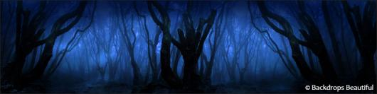Backdrops: Dark Forest  8 Twilight