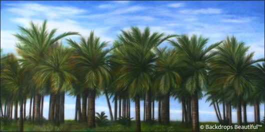 Backdrops: Palm Trees
