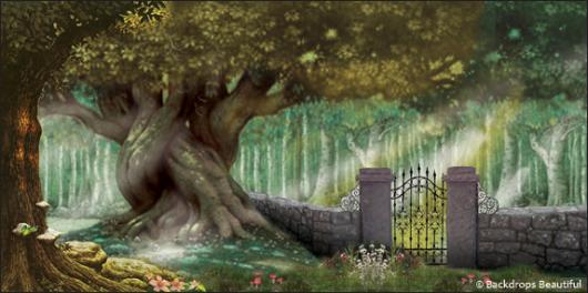 Beautiful mystical forest
