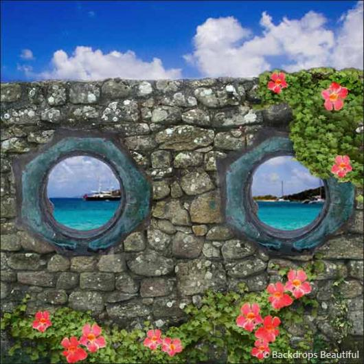 Backdrops: Window View 4