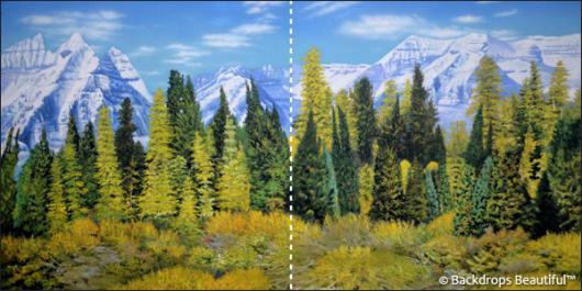 Backdrops: Aspen Mountains 1B Panel
