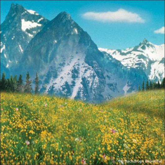 Backdrops: Aspen Mountains 6