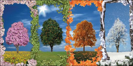 Backdrops: Trees Seasons Panel 1