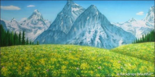 Backdrops: Aspen Mountains 4
