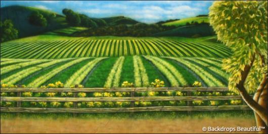 Backdrops: Vineyard 1A