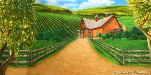 Backdrops: Vineyard 1B
