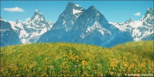 Backdrops: Aspen Mountains 4B
