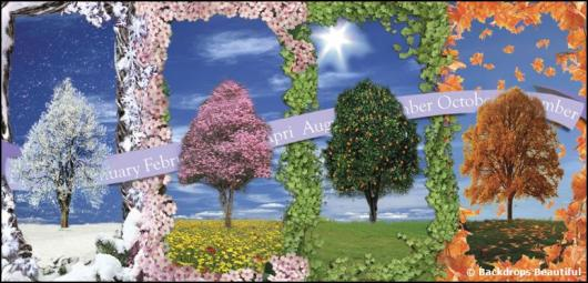 Backdrops: Trees Seasons Calendar 2