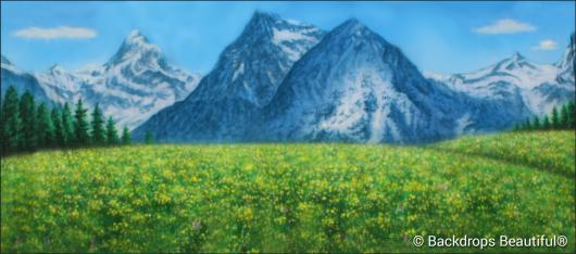 Backdrops: Aspen Mountains 5