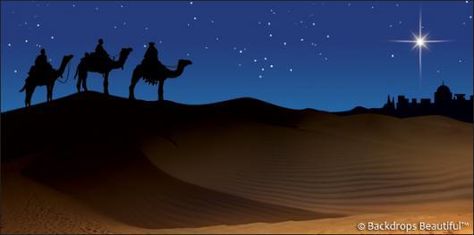 Backdrops: Nativity Scene 3