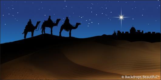 Backdrops: Nativity Scene 2B