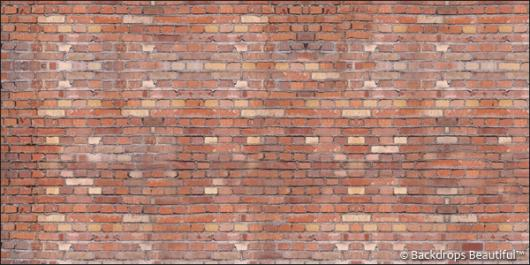 Backdrops: Brickwall 6A