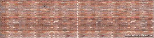 Backdrops: Brickwall 6 Panel
