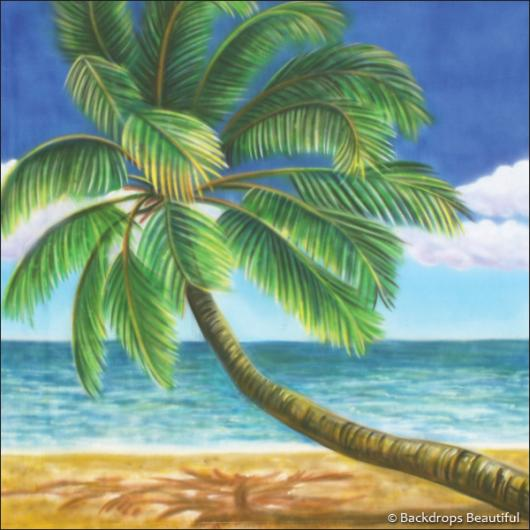 Backdrops: Tropical Beach 10