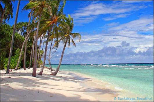 Backdrops: Tropical Beach  6