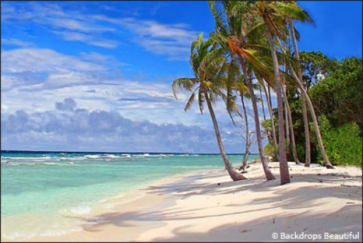 Backdrops: Tropical Beach  7