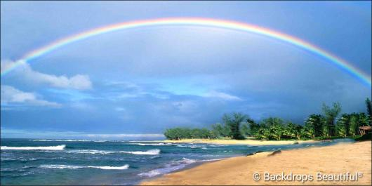 Backdrops: Tropical Beach 16 Rainbow