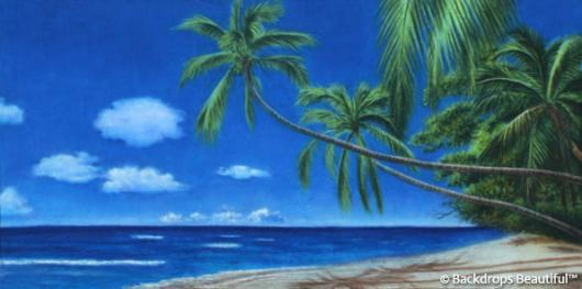 Backdrops: Tropical Beach 14
