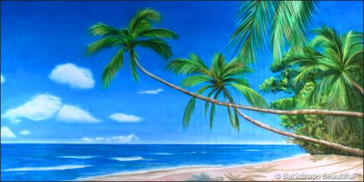Backdrops: Tropical Beach  2