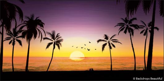 Backdrops: Sunset Beach 1