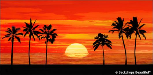 Backdrops: Sunset Beach 4