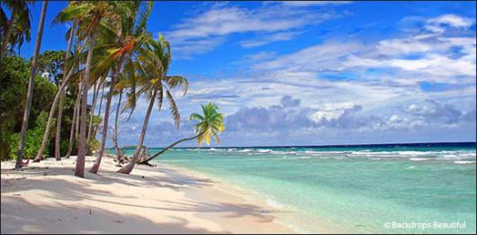 Backdrops: Tropical Beach 13A