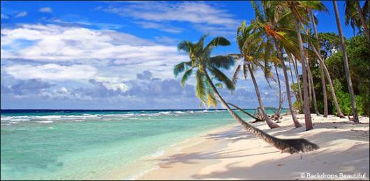 Backdrops: Tropical Beach 13B