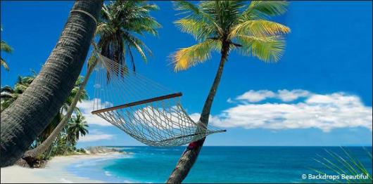 Backdrops: Beach Hammock 1B
