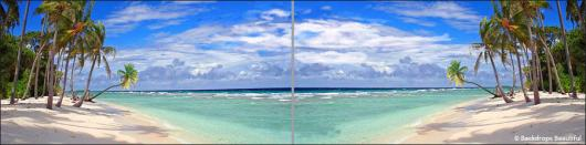 Backdrops: Tropical Beach Panel 1