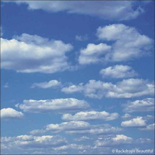 Backdrops: Clouds 1